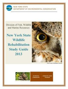 wildlife rehabilitation exam study guide