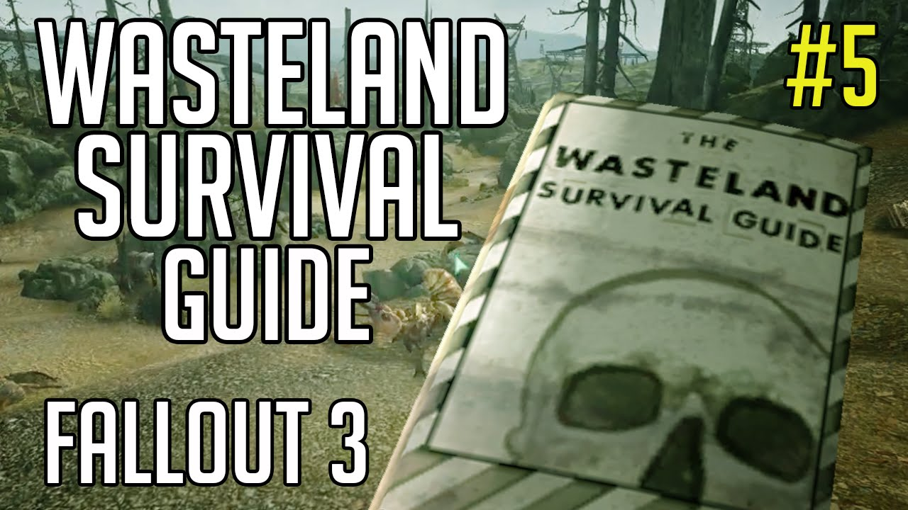 fallout 3 wasteland survival guide