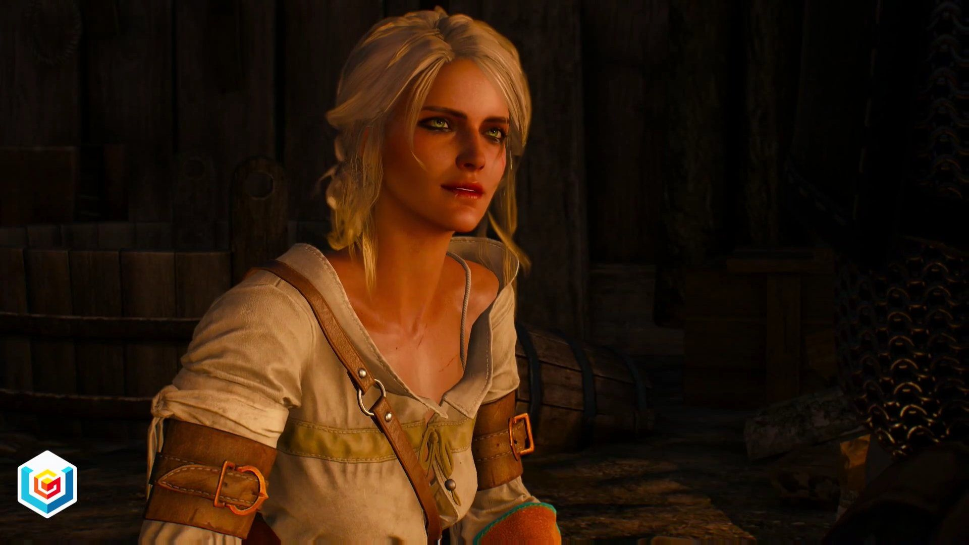 the witcher 3 quest guide