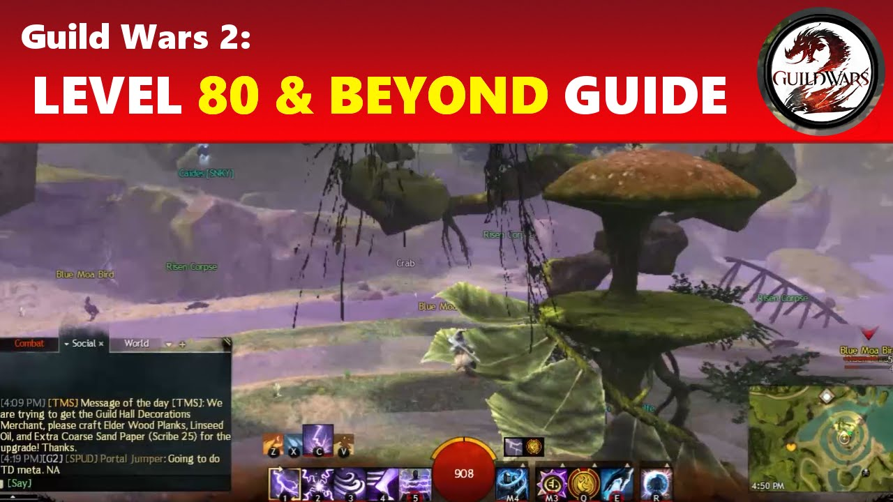 guild wars 2 quick leveling guide